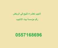 انابيب خضراء للبيع في الرياض