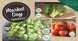 spinneys market
