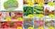 Fatima Supermarket offers