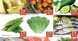 Kenz Hyper Market Mid-week offers