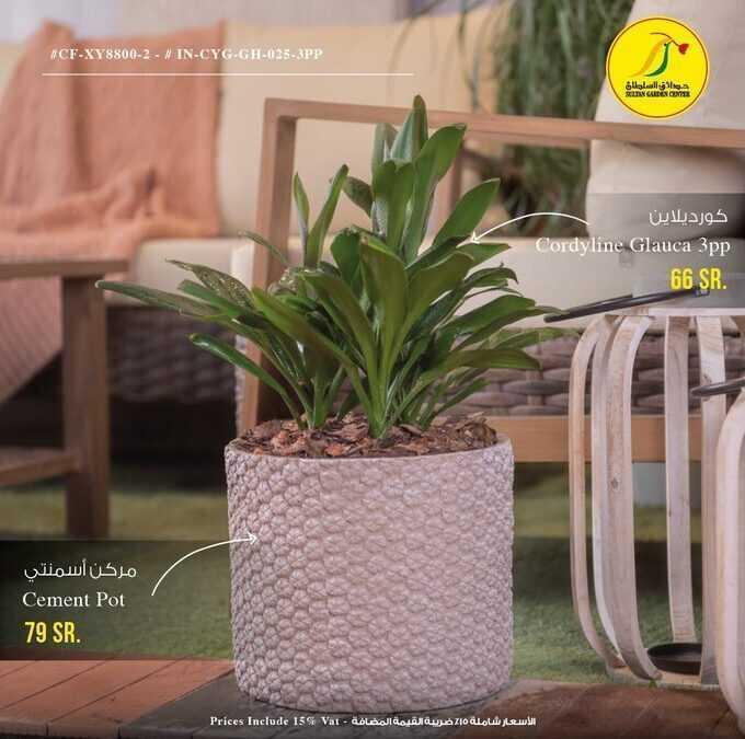 عروض حدائق السلطان : 19 أبريل 2021 الموافق 7 رمضان 1442